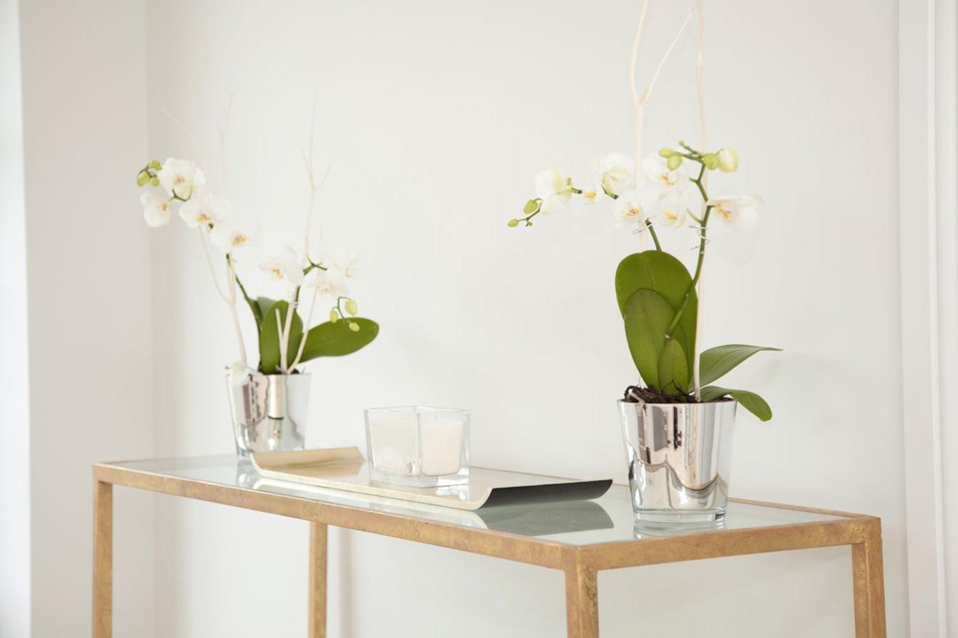 Design Box London - Interior Design - Richmond Park Home, TW10 - Side Detail